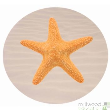 Shell Starfish Playmat