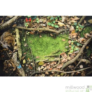 Images In Nature Playmat Woodland Floor