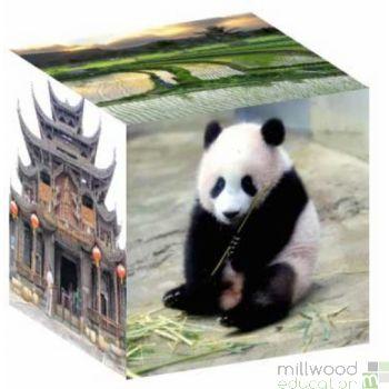 Culture Cube Asia