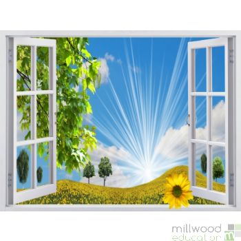 Windows to the World - Sunflower (Large)