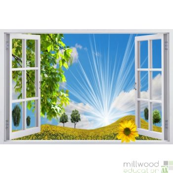 Windows to the World - Sunflower (Medium)