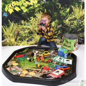 Learn About Minibeasts Discovery Tub