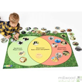 Animal Sorting Set