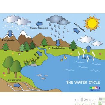 Water Cycle Wallboard