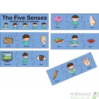 Senses Puzzle