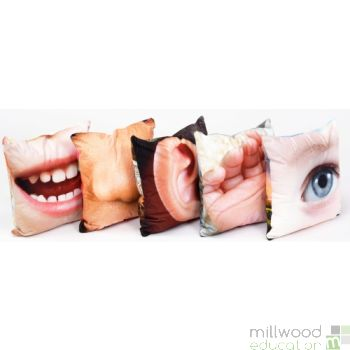 Senses Cushions Set 2