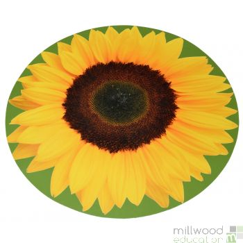 Giant Sunflower Mat
