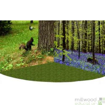 Woodland Wonderscape Panels  Special Offer
