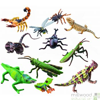Plastic Reptiles and Insects Set