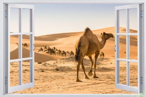Windows to the World - Desert (Medium)