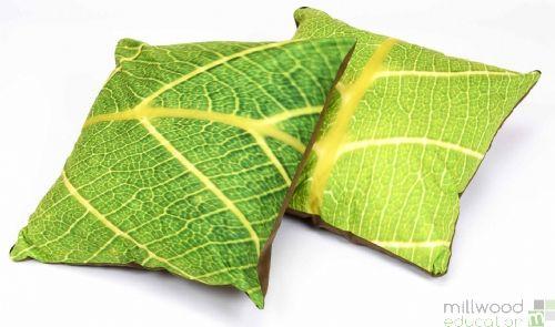 Cushion - Leaf