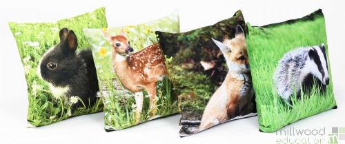 Cushions - Baby Woodland