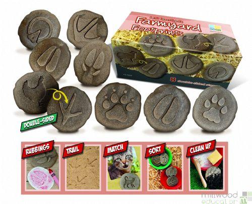 Let's Investigate – Farmyard Footprints