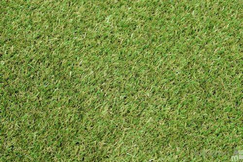 Grass Matting, 1m x 2m