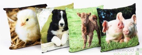 Cushions - Baby Farm