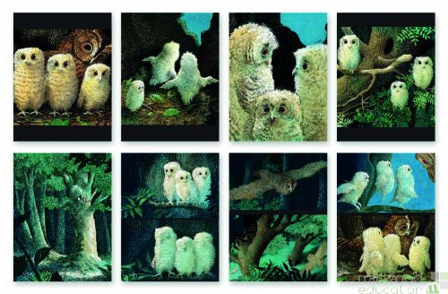 Story Talk Sequencing Cards Owl Babies